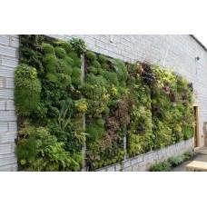 Система вертикального озеленения тип 6 (6 карманов 2*3), Gozon